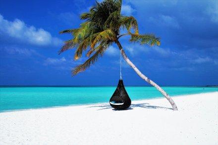 https://pixabay.com/pt/photos/maldivas-palmeira-hammock-praia-3220702/